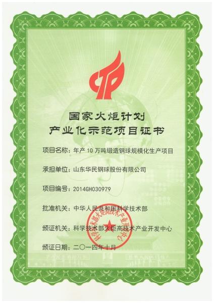 火炬计划项目证书
